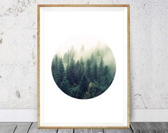 Trees Forest, Modern Scandinavian Print, Modern Wall Art, Geometric Print, Forest Print, Forest Wall Print, Pine Forest, Forest Photograph