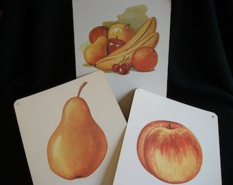 Vintage School Flashcards with Fruit