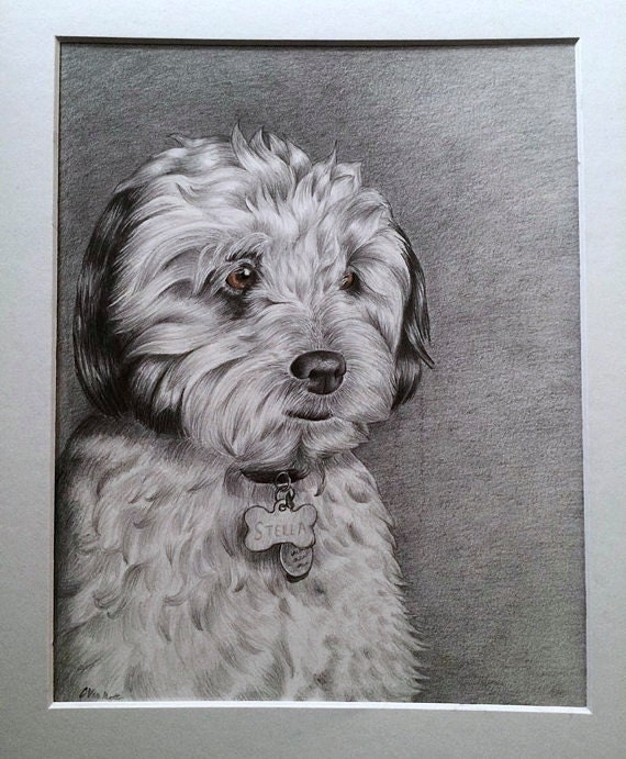 Custom Pet Portrait / Drawing - I will draw your beloved dog, cat, or favorite animal! Custom Gift or Memorial