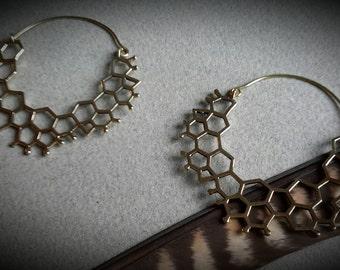 brass earrings *bee*