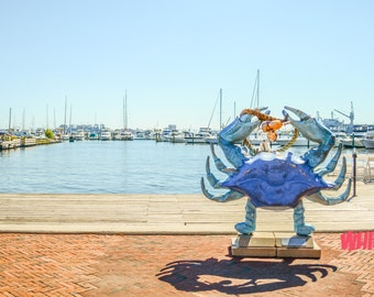 Fells Point. Baltimore. Photography. History. Blue Crab.