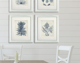 Nautical Decor Set 4 prints - Indigo Blue Seaweed 1 - Nautical Print Wall Art beach house decor picture bathroom decor Indigo Blue decor