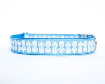 Pineapple Dog Collar in Blue
