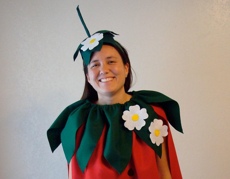 Diy strawberry do it yourself adult costume halloween zoom solutioingenieria Choice Image