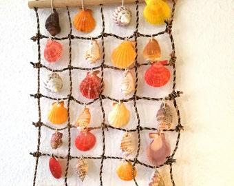 SALE Seashell Wall hanging