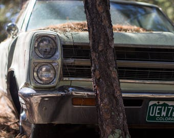 Vintage Classic Car Abandoned In A Junkyard Rustic Fine Art Photography Print by Ben Burgert - Multiple Sizes