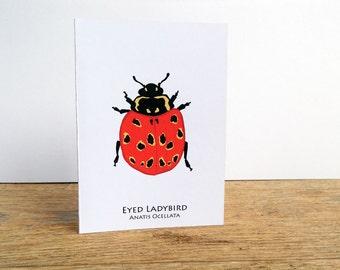 Eyed Ladybird Card