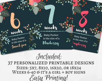 Pregnancy Weekly Sign, Maternity Photo Prop, Baby Bump Sign, Pregnancy Week By Week, Pregnancy Countdown, Printable Weeks 6-40.