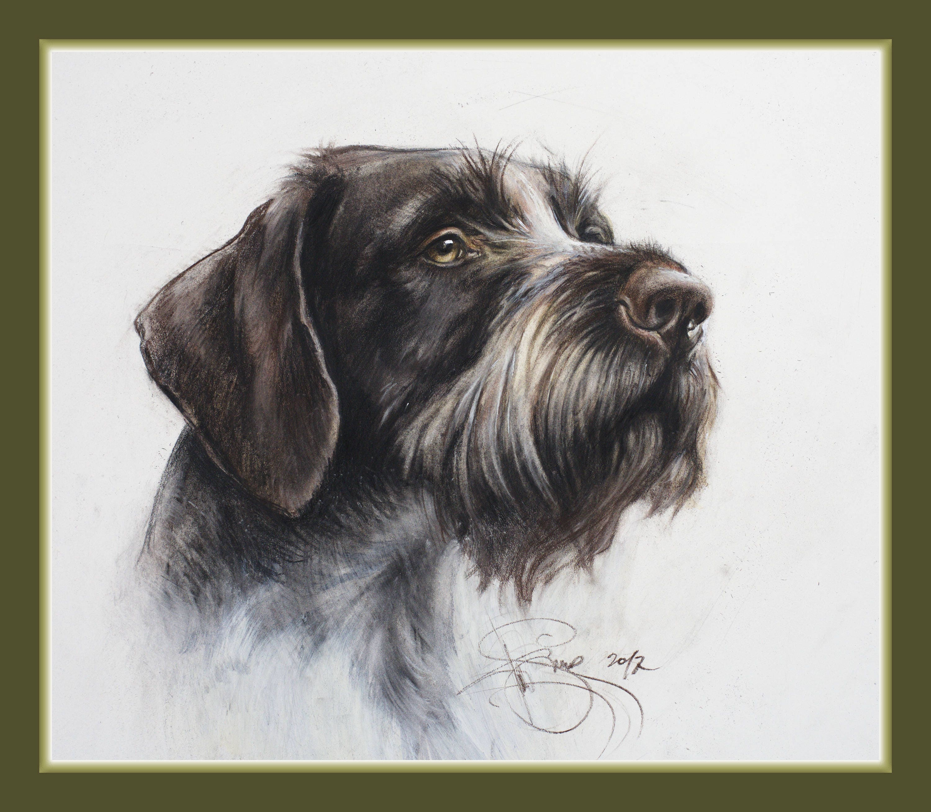Watercolour print German Wirehaired Pointer.