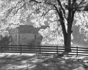 Morning in Ohio Countryside - Black and White  Photo Print - Fine Art Photography (BW07)
