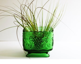 Vintage Square Planter Green Glass by ANCHOR HOCKING Footed with Raised Grape Design Succulent Planter Jungalow Style