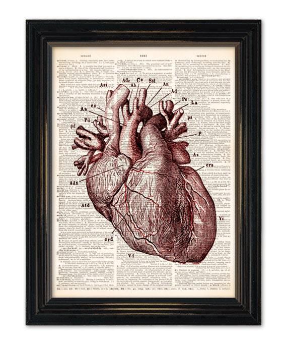 El arte de diccionario del corazón impresión médico anatomía