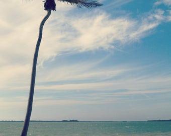 Palm tree on the beach landscape print, nature, travel, turquoise, blue, beachy, nautical, beachscape, seascape, seaside, ocean, sea, island