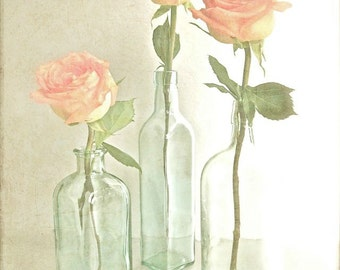 """Rose Art, Rose Photography, Cottage Chic Peach Art, Home and Garden, Warm Country Kitchen Flower Art, Country Cottage Decor- """"Simplicity"""""""