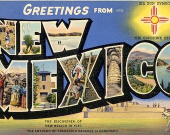 New Mexico Sunshine State Large Letter Vintage Greetings Postcard (unused)