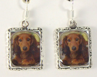 Dachshund Dog Puppy Earrings Jewelry 3D Red Brown Picture Long Haired Silver Dimensional