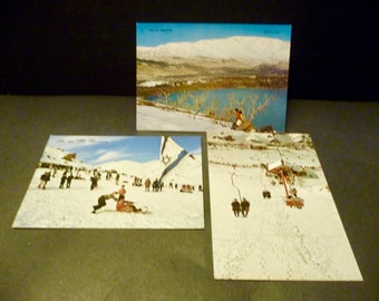 3 Israel postcards- Golan Heights- Mt. Hermon- Sking and View - 1970's Chrome made in Israel