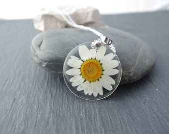 Real Daisy Necklace Pressed Flowers  pendants Botanical Jewelry Real dried flower Pendants Eco Resin Pendant Eco Necklace Natural necklace