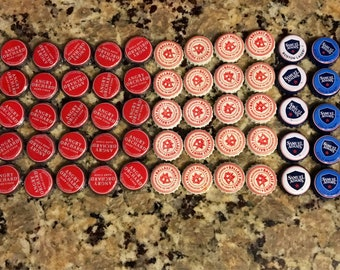 65 beer bottle caps