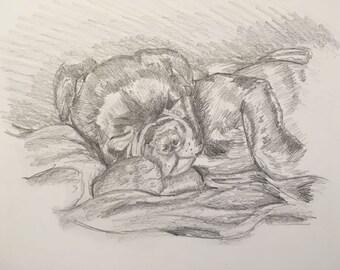 Pet Dog portrait A4 or A3