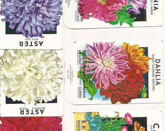 6 Old 1950's-60's FLOWER SEED Packets. Aster - Red, White, Blue, Dahlia, Petunia, and Cactus