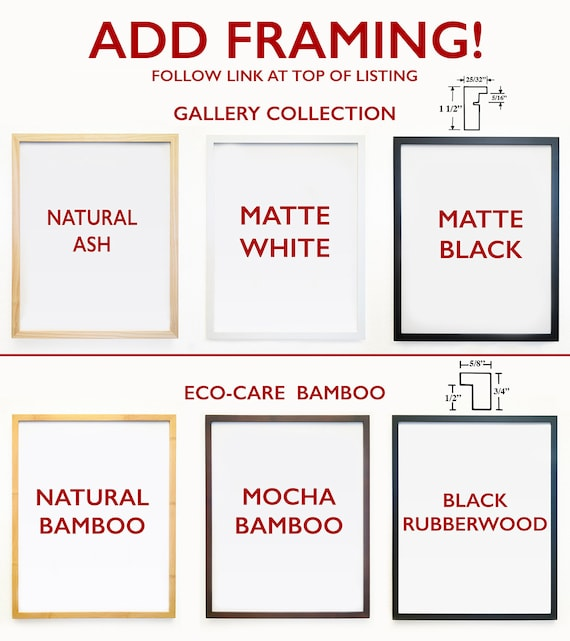 ADD 1 FRAME Gallery Quality Frames To Go Along With Your