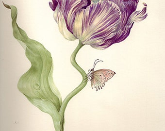 Thumbelina in Tulip - Archival Limited Edition Giclee Print, signed and numbered