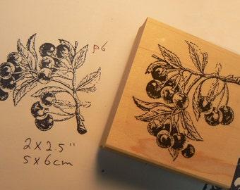 Cherries rubber stamp WM P6