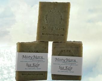 ALL NATURAL - Sea Kelp Soap Eucalyptus Lemon - Light Exfoliating Bar