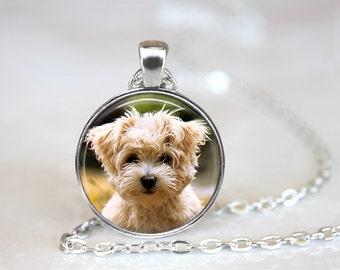 Maltese Dog Glass Pendant/Necklace/Keychain