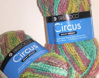 Berroco Circus Wool Blend Yarn Knit Crochet Crafts Multi Color Blue Green Purple 2 Skeins 1521