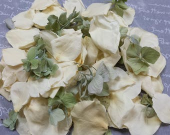 """Freeze Dried White Rose and Green Hydrangea Petals (SAMPLE or 5 cups) """"Irish At Heart"""""""