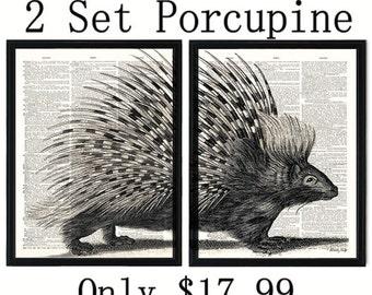 Porcupine dictionary art print. Two set animal art print on upcycled vintage dictionary page book art print 8x10inch