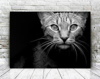 Printable Cat Art Poster, Black and White Cat Poster Art, Cat Wall Art Print, Cat Art Decor, Cat Wall Art Decor