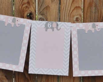 Elephant 12 Month Photo Banner, Girl First Birthday, Monthly Photo Banner, First Year Banner, Picture Banner, Polka Dots, Chevron