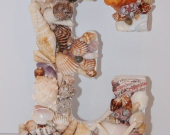 Shell Letter E Wall Decor White and Seashells