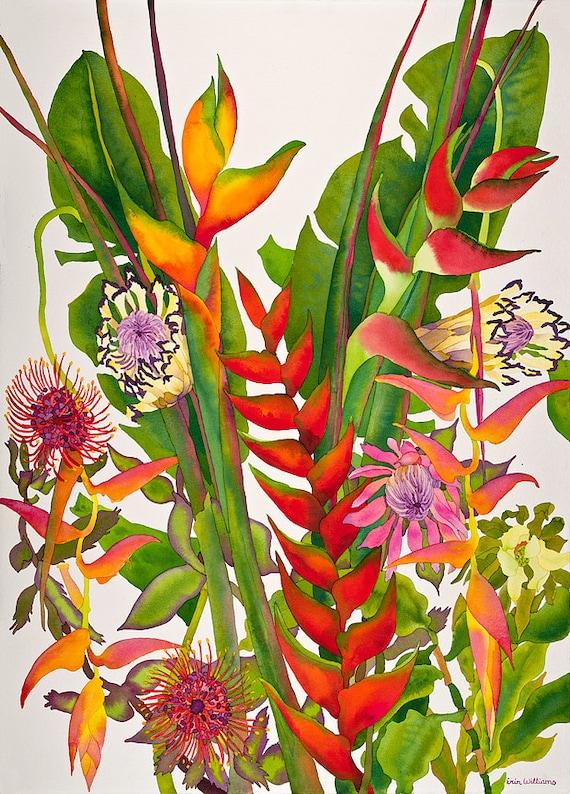 aquarelle fleur tropicale oiseaux de paradis peinture. Black Bedroom Furniture Sets. Home Design Ideas