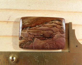 Beautiful Biggs Jasper Cabochon (JAS2622)