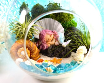 "Little Mermaid Beach Terrarium Kit ~ 7"" Air Plant Terrarium Kit ~ Coastal Living Beach Decor ~ Sleeping Mermaid on a Rock ~ Gift ~ Christmas"