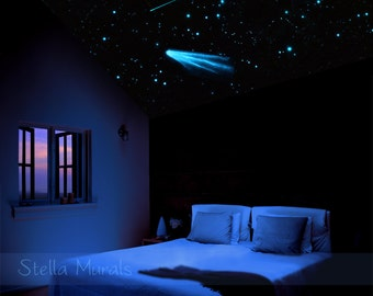 Night Sky Star Ceiling | Glow in the Dark Star Stickers 200-1000 | Moon Decal, Comet Decal and Shooting Star Decals