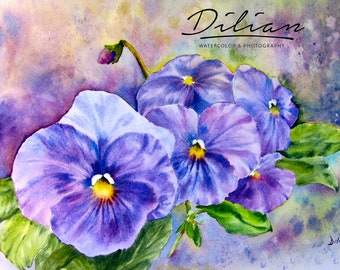 Pansy Garden - Original Watrcolor Painting  by Dilian Deal