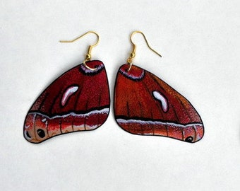 Handcrafted Butterfly Moth Wing Earrings, Jewelry, Hypoallergenic, Sterling Silver or 14k Gold,