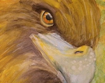 Golden Eagle Watercolor Painting