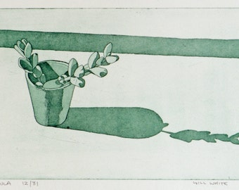 Crassula -  Pot Plant Etching - Green Etching of Plant - Original Print by William White - Hand Pulled Print - FREE SHIPPING