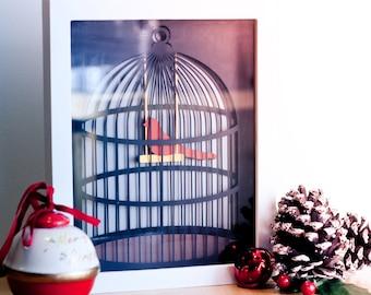 Bird in a Cage Vector / Clip Art