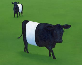 Two Belted Galloways in a Field 8 x 8 Print by SBMathieu