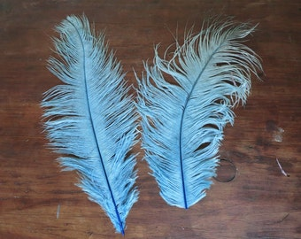 Large Vintage Feathers Antique Millinery Hat Making Supplies 9 & 11 inches Light Blue Hat Plumes