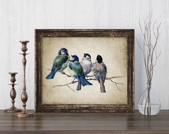 Blue Birds Print - Bird Poster - Bird Illustration - Vintage Bird - Digital Art - Printable Art - Single Print #131 - INSTANT DOWNLOAD