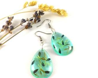 Blue earrings Real flower earrings Blue drops Sky blue earrings Pressed flowers Terrarium earrings eal flower jewelry Nature earrings