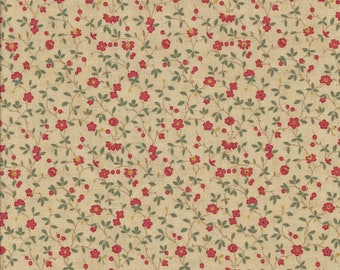 Collections for a Cause Friendship by Howard Marcus for Moda 46131-15 civil war fabric